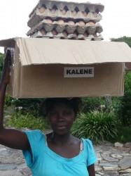 Carrying eggs to sell